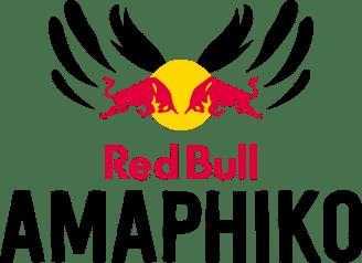 Red Bull Amaphiko fellowship