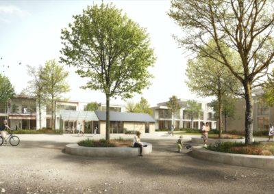 Development of neighbourhood life in a housing project